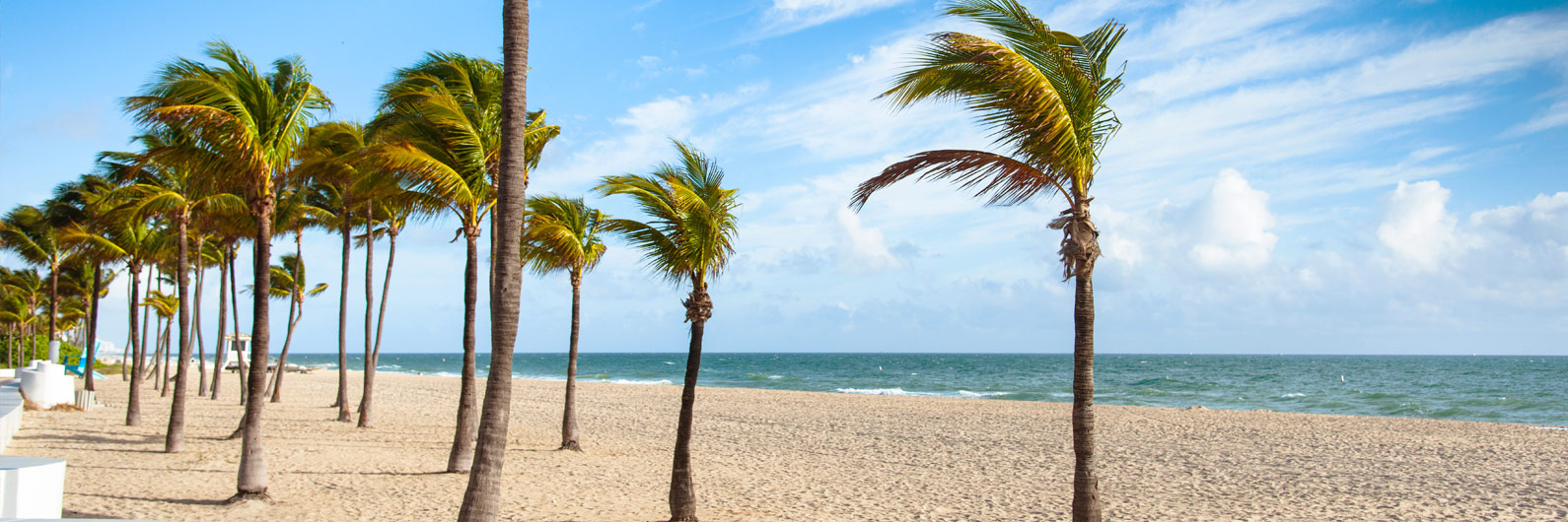 Book Flights To West Palm Beach Pbi